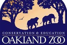 Zoo & Aquarium Logos & Graphics / Zoo & aquarium logos & graphics from the pages of www.blooloop.com