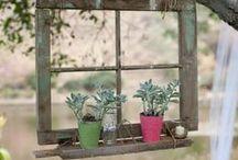 Gardening/Farming/Landscaping / by Rayelle Doolaege