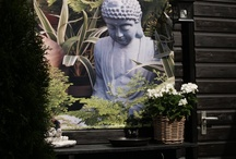 Boeddha / by Tante Ingrid