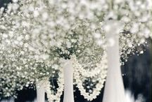 Classical wedding style inspiration // Matrimonio dallo stile classico / Scopri idee e ispirazioni per un matrimonio in stile classico: elegante, raffinato e bianco