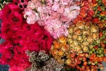 Floral Inspiration / Bouquets of florals fit for Grand occasions.