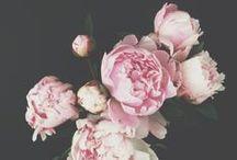 i do - floral