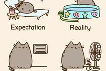 Expectasion✨vs Reality