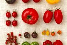 Onze helden; groenten! / Wat zijn ze toch mooi en heerlijk allemaal!