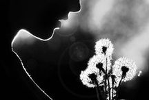 Make a Wish <3  / by Julie Vieira