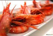 Comida Gourmet Food / Food