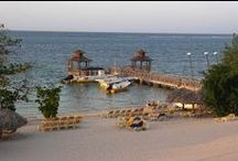 JAMAICA DIVE CENTER / DRESSEL DIVERS DIVE CENTER @ JAMAICA  Come & Join us at Montego Bay