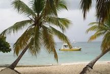 SAONA ISLAND, DOMINICAN REPUBLIC / Come & Join SAONA with DRESSEL DIVERS