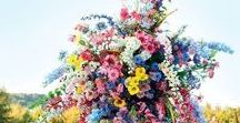 Vibrant Wedding Ideas / Every colour together in very vibrant weddings!