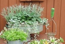 perfect renewable garden