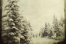 LET IT SNOW / by martina @ Martinka Crystal
