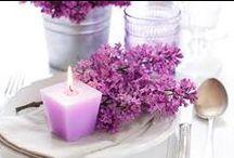 Purple color /Fialová všade / Páči sa Ti fialová?