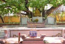 De rijkdommen van de Vietnamese religie / Wat zijn de rijkdommen van de Vietnamese religie? Op dit bord pinnen wij indrukwekkende foto's over de Jade Emperor Pagoda en de Buu Long Pagoda; interessante informatie over de houding van de Falun Dafa (meditatie); impressie van de achtergrond en het ontstaan van deze vorm van meditatie; imposante foto's van het Tao Dan Park waarin wij zullen mediteren; en verder alles waarvan wij denken dat het iets toevoegt aan onze gevoelens en ideeën bij en over de Vietnamese religie #NHTV #3MTT
