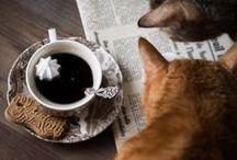 Coffee stylist / Aranżacje z kawką, porannej porcji kofeiny...mniammm.....