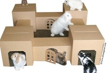 Cool Rabbit/Small Animal Products