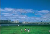 2001년 영등포 관광사진공모전