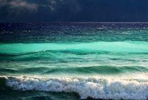 """It's an """"Ocean"""" World"""