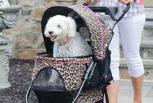 Dog Strollers / Stylish strollers from Gen7Pets keep pets safe and comfortable. Ideal for small dogs or older dogs who tire from walks and a convenient option for containing dogs in public places.
