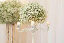 Wedding Centerpieces / Centerpieces and florals