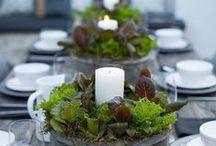 Candles best friends of a romantic evening