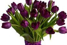 BUKIETY, BUKIECIKI, KOMPOZYCJE KWIATOWE /bouquets, small bunch,  flower arrangement/