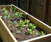 Bricolages pour le jardin / Idées pour aménager le jardin  - bricolages & astuces pour l'extérieur