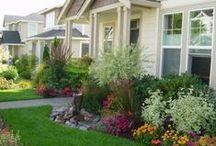 Jardinagem / Gardening