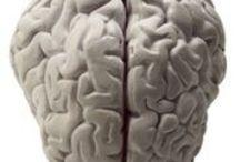 Brain / by Marline