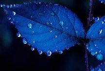 Blues / Blue is a colour of peaceful mind and colour of the healing