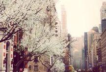 Spring LOVE!!!