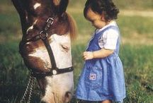 The Bond Between Horse and Owner / This is a board dedicated to sharing great pictures that encompass the deep bond between a horse and their owner. I am hoping to get inspiration for my book cover!