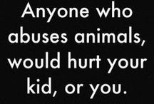Say NO to Animal Abuse / We simply hate innocent animals being abused by some human creatures. Feel free to pin and spread the word about it to others.