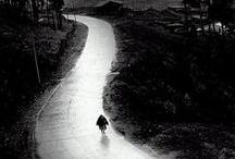 Vocación / Encuentra más imágenes como esta en http://catholic-link.com