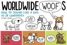 Dog information