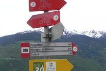 TdV | Valtellina / Taccuini di viaggio Armillaria | TdV | Valtellina