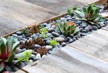 Ideen für Garten & Gestaltung / Jeder Traumgarten beginnt mit einer Idee - Finde DIY Ideen für Gartengestaltung. Lass Dich von schönen Gärten inspirieren und gestalten Deinen Garten.