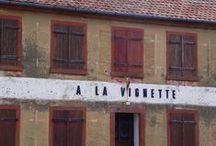 TdV | Alsazia / Taccuini di Viaggio Armillaria nella regione francese dell'Alsazia alla scoperta di nuove cantine