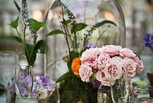 Glass Display Domes / Glass Domes do more than protect your collectibles...they are home decor all by themselves! Create lovely vignettes in your home or retail environment using glass display domes, bell jars and cloches from Fine Home Displays