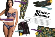 Autumn/Winter 2012 / Gorgeous new styles from the Panache brands for AW12 including this season's Fashion Friday trend boards  / by Panache Lingerie