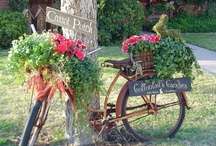 -:~:- Container gardening -:~:- / by Lynnette VanCleave