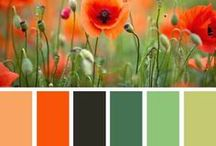 Crafts - Color Combos / by Sonia Kertznus