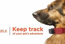 Nuzzle / GPS Tracking Collar for your pets.  / by Megan Dubbaneh