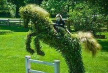 Humorous Yard Work / Cartoons, quotes, and images of how much we all really love to work on our lawns sometimes.