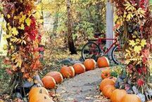 Fall Yard Decorations / Get inspired by these Fall yard decorations! Make your yard the neighborhood favorite with ideas from from football, pumpkins, ghosts, turkeys, and more!