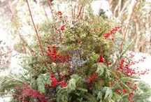 Winter Yard Decoration / Discover the many ways you can make your yard look jolly even in the winter!