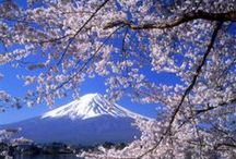 日本 / Places to go and things to do in Japan!