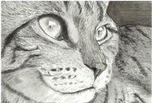 Рисуем животных / Рисуем животных