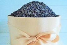 LAVENDER For The Home / ~ the wonderful herb, LAVENDER, for fragrance and beauty ~