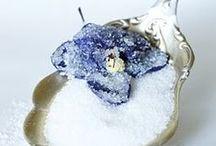 EDIBLE Flowers & Herbs / edible flowers & herbs create magical dishes