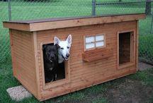 TEE ISE koerakuut {Doghouse}